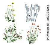 hand drawn set of watercolor... | Shutterstock . vector #353065256