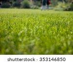 grass field nice shot   Shutterstock . vector #353146850