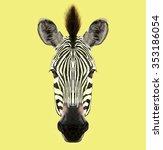 Illustrated Portrait Of Zebra....