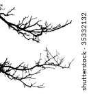 vector silhouette of the branch ... | Shutterstock .eps vector #35332132