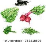 hand drawn watercolor food... | Shutterstock . vector #353818508
