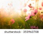 cosmos flowers in the garden... | Shutterstock . vector #353963708