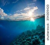 Coral Reef In Tropical Ocean...