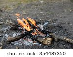 campfire in the wood | Shutterstock . vector #354489350