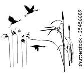 vector drawing flying birds - stock vector