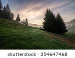 fir trees on hillside meadow with conifer forest in fog under the blue sky before sunrise - stock photo