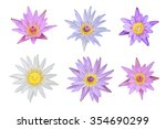 six mix of pink and white lotus ... | Shutterstock . vector #354690299