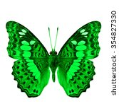 Small photo of Common Commander (Moduza procris milonia) in fancy color profile isolated on white background, beautiful green butterfly