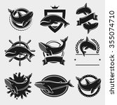 whale label and icons set....   Shutterstock .eps vector #355074710