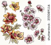 Collection Of Hand Drawn Rose...