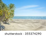 tropical beach in cayo largo...   Shutterstock . vector #355374290
