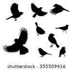 silhouettes of birds | Shutterstock .eps vector #355509416