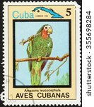 "Small photo of CUBA - CIRCA 1983: a postage stamp printed in CUBA shows Amazona leucocephala, the series ""Cuban Birds"", circa 1983"