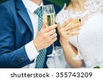 bride and groom holding wedding ... | Shutterstock . vector #355743209