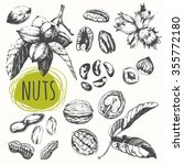 Set Of Hand Drawn Nuts. Black...
