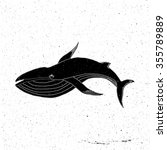 hand drawn whale in grunge... | Shutterstock .eps vector #355789889