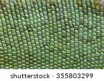 Chameleon Lizard Skin Pattern...