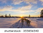 dog sledding with huskies in... | Shutterstock . vector #355856540