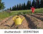 on arable field is a funny... | Shutterstock . vector #355907864
