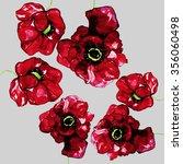 poppy isolated illustration  | Shutterstock . vector #356060498