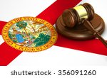 florida us state law  code ... | Shutterstock . vector #356091260