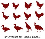 poultry silhouette  vector...   Shutterstock .eps vector #356113268