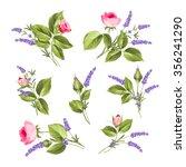 vintage flowers set. wedding... | Shutterstock .eps vector #356241290
