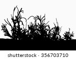 grass   flower   black... | Shutterstock . vector #356703710