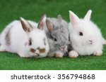 group of three baby adorable... | Shutterstock . vector #356794868