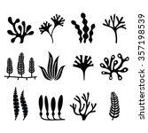 seaweed icons set   nature ...