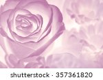 flower on soft pastel color in... | Shutterstock . vector #357361820