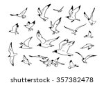 Sketch Of Flying Seagulls. Set...