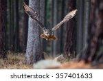 eurasian eagle owl  bubo bubo ... | Shutterstock . vector #357401633