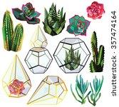 Cactus Succulent Flower Low...