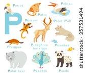 p letter animals set. english... | Shutterstock .eps vector #357531494
