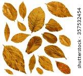 set of golden and bronze laurel ... | Shutterstock . vector #357532454