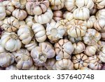 Common Garlic  Garlic  Allium...