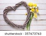Fresh  Spring Yellow Daffodils...