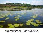 danube delta landscape | Shutterstock . vector #35768482