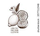 ink hand drawn lemon isolated... | Shutterstock .eps vector #357711548