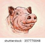 Brush Painting Ink Draw Pig...