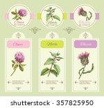 vector vintage template banner... | Shutterstock .eps vector #357825950