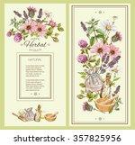 vector vintage hand drawn... | Shutterstock .eps vector #357825956