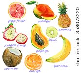 Watercolor Fruits. Hand...