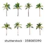 coconut trees on white... | Shutterstock . vector #358085390