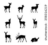 deer collection   vector... | Shutterstock .eps vector #358316219