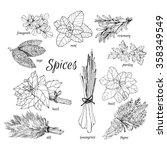collection of drawing with... | Shutterstock .eps vector #358349549