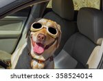 a happy funny dog pilot  yellow ... | Shutterstock . vector #358524014