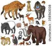 different kind of wild animals... | Shutterstock .eps vector #358563038
