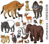 different kind of wild animals... | Shutterstock .eps vector #358563038